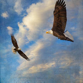 Angie Vogel - Eagle Dream