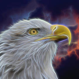 Ernie Echols - Eagle Head In Clouds Digital Art