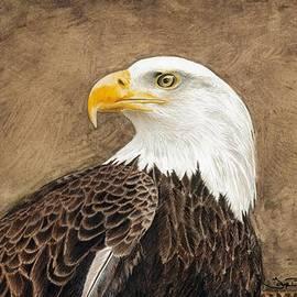 Tonya Butcher - Eagle