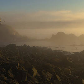 Marty Saccone - Early morning fog at Quoddy