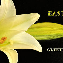 Geraldine Scull   - Easter Greetings