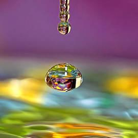 Geraldine Scull - Easter Water Drop Series 2