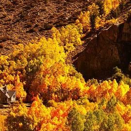 Michael Courtney - Eastern Sierra Autumn