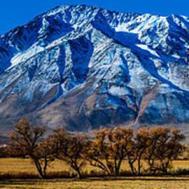 Gary Whitton - Eastern Sierra Nevada Panorama - Bishop - California