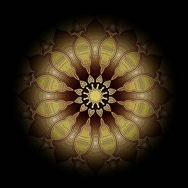 David Dehner - Eclipsed Mandalas   340