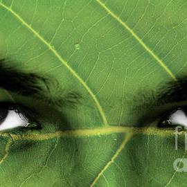 Image World - Eco friendly