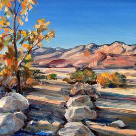 Robert Gerdes - Edge of the Desert