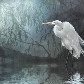 Brian Tarr - Egret in moonlight