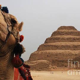 Bob Christopher - Egypt Step Pyramid Saqqara