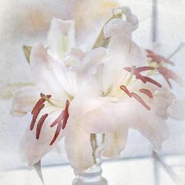 Jenny Rainbow - Elegance De Elegance
