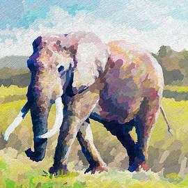 Anthony Mwangi - Elephant