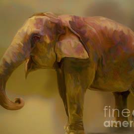 Ted Guhl - Elephant Smile
