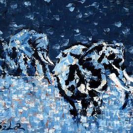 Lidija Ivanek - SiLa - Elephants