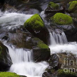 Bob Christopher - Elk Creek Oregon 1