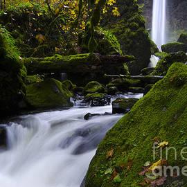 Bob Christopher - Elowha Falls Columbia River Gorge Oregon 5
