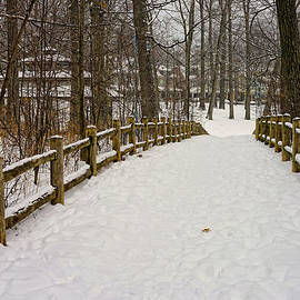 Nicky Jameson - Embracing Winter