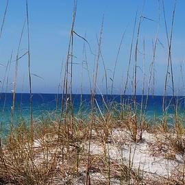 Michele Kaiser - Emerald Coast Beaches