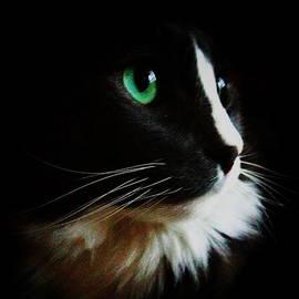 Emerald Eyes Original