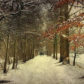 Annie Snel - Enchanting Dutch Winter Landscape