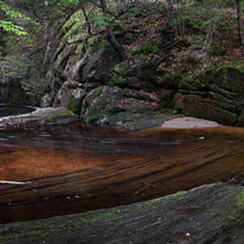 Bill  Wakeley - Enders State Forest Panorama