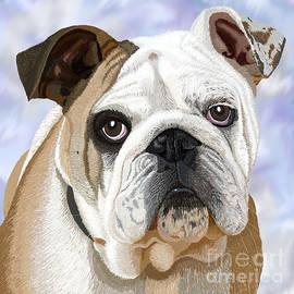 Jacqueline Barden - English Bulldog Portrait