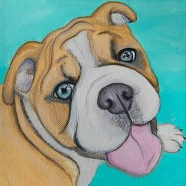 Lauren Hammack - English Bulldog Puppy Smile
