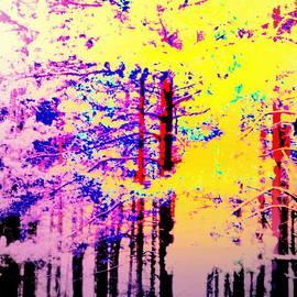 Hilde Widerberg - Enlightened Woods