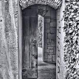 Delilah Downs - Entrancing Entrance in Monochrome