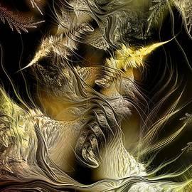 Casey Kotas - Environmental Transitions 5
