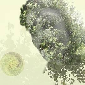 Andre Pillay - Equilibrium