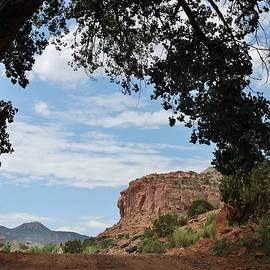 Janice Rae Pariza - Escalante Canyon Arch