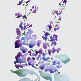 Barbara McMahon - Essence of Lilac