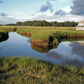 Steve  Gass - Essex Massachusetts salt marsh