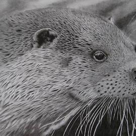 Giorgio  Smiroldo - Eurasian River Otter