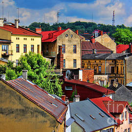 Mariola Bitner - European Rooftops