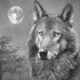 Roy  McPeak - European Wolf