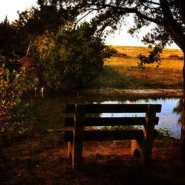 Randi Grace Nilsberg - Evening Calm
