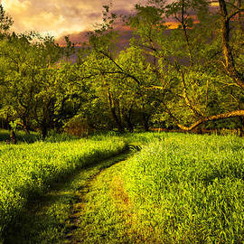 Debra and Dave Vanderlaan - Evening Trail