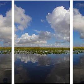 Alice Gipson - Everglades Clouds