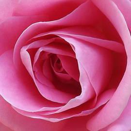 Lorna Hooper - Everlasting Pink