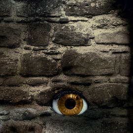 Christopher and Amanda Elwell - Eye In Brick Wall