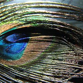 Tara Miller - Eye Lashes