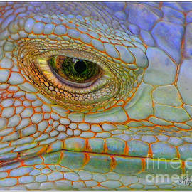 Mariarosa Rockefeller - Eye of the Iguana