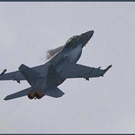 Maj Seda - F-18 Super Hornet Vortices