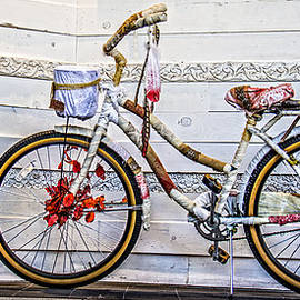 Ben and Raisa Gertsberg - Fairy Tale Bike Flying Machine