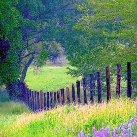 ARTography by Pamela Smale Williams - Fairy Tale Meadow With Lupines