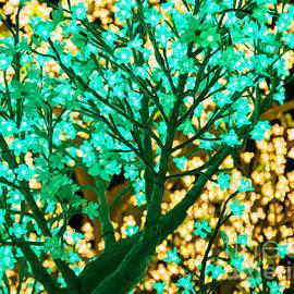 Nicholas Blackwell - Fairy Tree