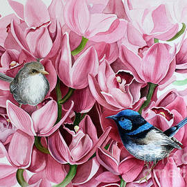 Debbie Hart - Fairy Wrens and Orchids