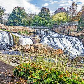 Elvis Vaughn - Fall at a Falls