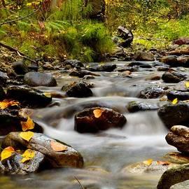 Phil Dionne - Fall at K.L.O. Creek